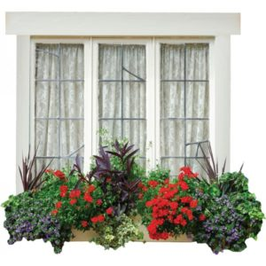 Window Mural, Stickers | Dementia Products